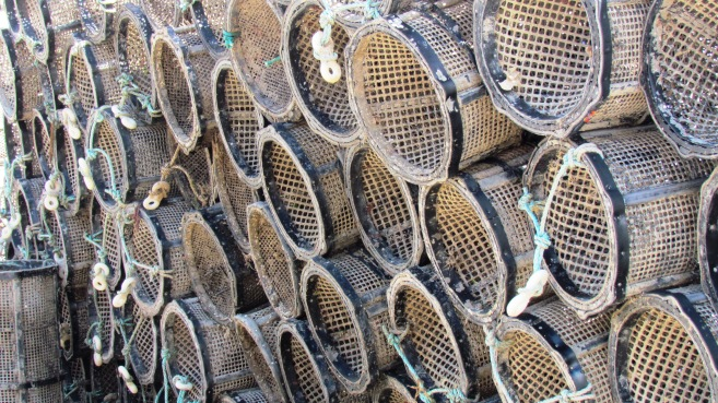 Newquay -prawn pots