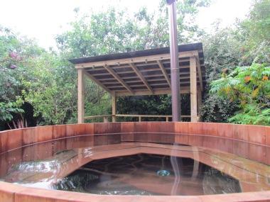 Wood fired soaking tub