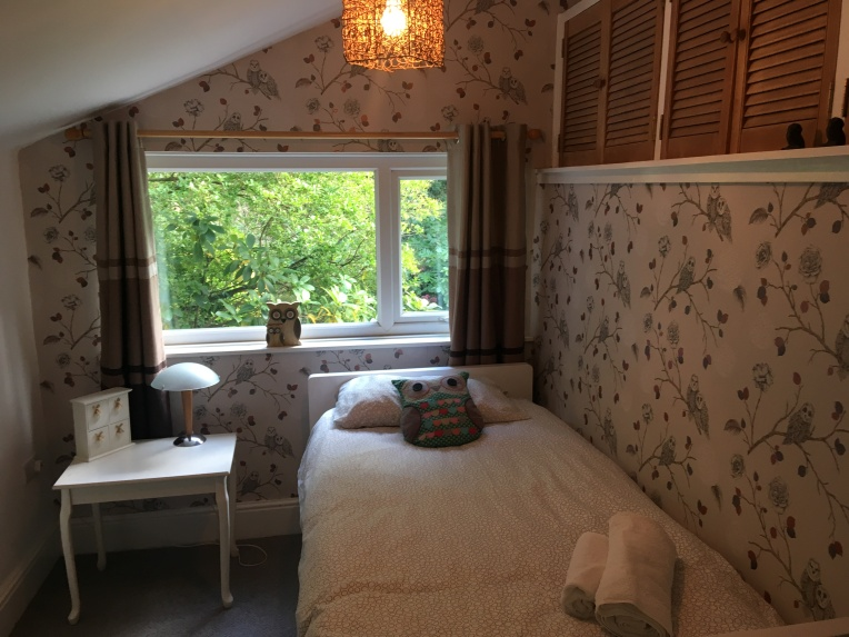 Single bedroom - with low level full size pull out bed