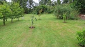 Rear field / garden